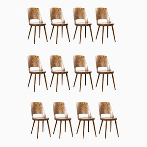 French Bentwood Mondor Dining Chairs from Baumann, 1960s, Set of 24