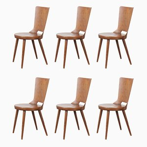 French Bentwood Dove Dining Chairs from Baumann, 1960s, Set of 6