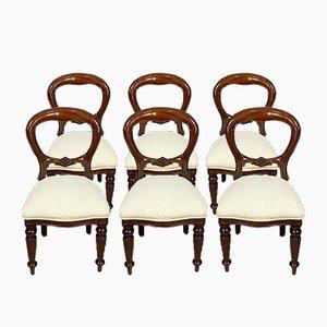 Napoleon III Mahogany Dining Chairs, 1930s, Set of 6
