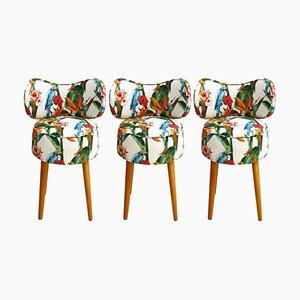 Italienische Mid-Century Hocker aus Birkenholz im modernen Stil, 3er Set
