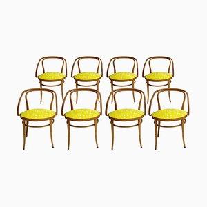 Mid-Century Birkenholz 209 Esszimmerstühle mit gelbem Bezug von Thonet, Deutschland, 1900er, 8er Set