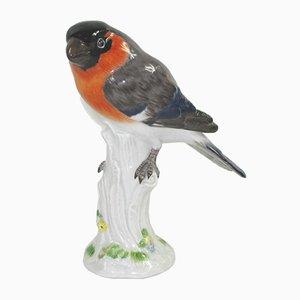 Antique Porcelain Bird Figurine from Meissen