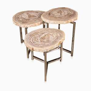 Petrified Wood Fossil Nesting Tables on Chrome Bases, Set of 3
