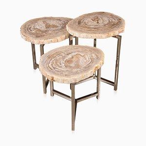 Tables gigognes fossiles en bois pétrifié sur bases en chrome, ens.de 3