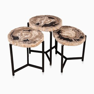 Petrified Wood Nesting Tables, 2000s, Set of 3
