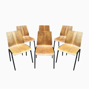German Dining Chairs from Drabert, 1960s, Set of 6