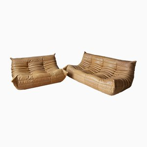 Camel Leather Togo 2-Seat & 3-Seat Sofa Set by Michel Ducaroy for Ligne Roset, 1970s, Set of 2