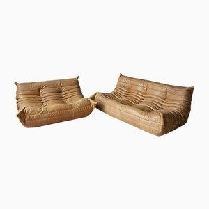 Set divano Togo a due e tre posti in pelle color cammello di Michel Ducaroy per Ligne Roset, anni '70, set di 2