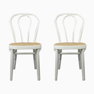 No. 218 Stühle in Weiß von Michael Thonet, 2er Set