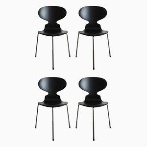 Modell Ant Esszimmerstühle von Arne Jacobsen für Fritz Hansen, 1950er, 4er Set