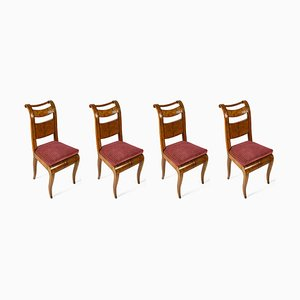 Maple Director Chairs, 1800s. Set of 4