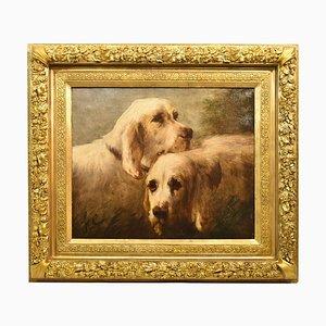 Retratos de perros, pintura antigua, pintura al óleo francesa sobre lienzo, siglo XIX