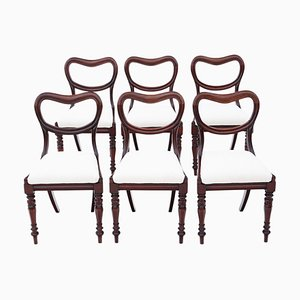 William IV Mahogany Balloon Back Dining Chairs, Set of 6