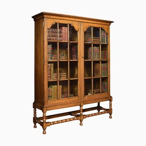 Oak 2-Door Bookcase