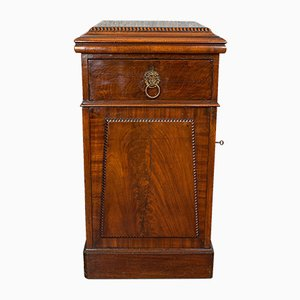 Antique English Regency Tall Mahogany Bedside Side Cabinet, 1820