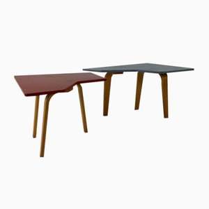 Coffee Tables by Cees Braakman for Pastoe, 1954, Set of 2