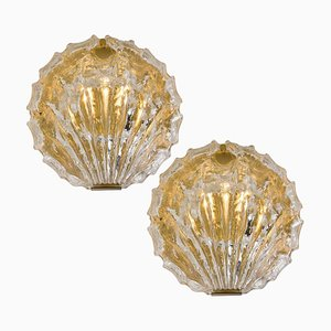 Golden Ice Glass Shell Wall Sconces from Kalmar, 1960s, Set of 2