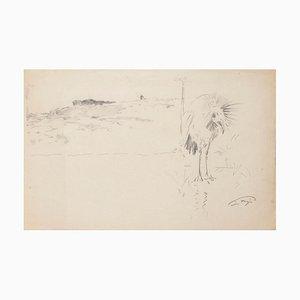Inconnu, paysage avec oiseau, dessin au crayon, 20e siècle