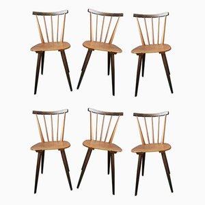 Scandinavian Bi-Color Dining Chairs, 1950s, Set of 6