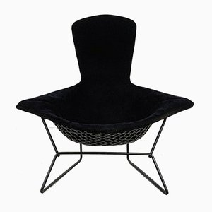 Bird Lounge Chair by Harry Bertoia for Knoll Inc. / Knoll International, 1960s