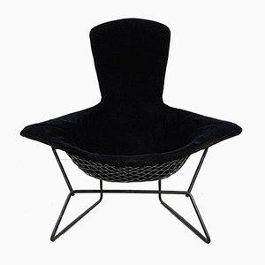 Bird Lounge Chair by Harry Bertoia for Knoll Inc. / Knoll International, 1960s
