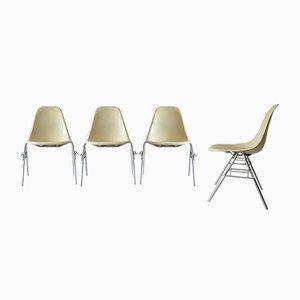 Stapelbare Glasfaser Esszimmerstühle von Charles & Ray Eames für Vitra, 1960er, 4er Set