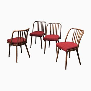Chairs by Antonín Suman for Ton, 1960s, Set of 4