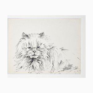 Marie Paulette Lagosse, The Cat, Stylo sur Papier, 1970s