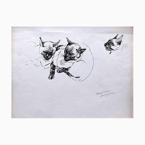 Marie Paulette Lagosse, Die Katze, Feder auf Papier, 1970er