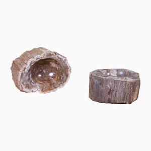 Vintage Petrified Wood Bowls, Set of 2