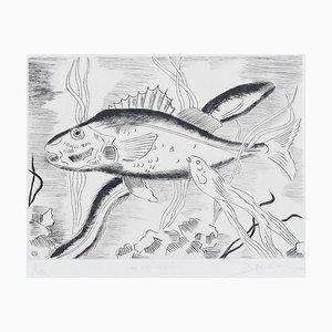Maurice Bouval - Fisch - Original Radierung - 1960er
