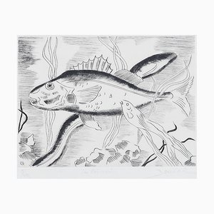 Maurice Bouval - Fish - Original Etching - 1960s