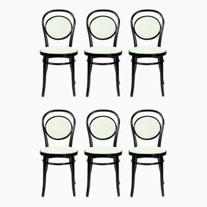 Romanian Bentwood Chairs by Michael Thonet, 1940s, Set of 6