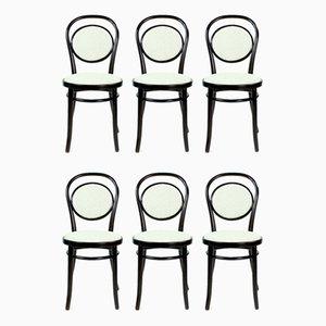 Rumänische Bugholz Stühle von Michael Thonet, 1940er, 6er Set