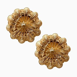 Amber Bubble Flush Mounts or Wall Sconces byHelena Tynell for Limburg, 1960s, Set of 2