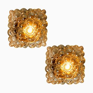 Amber Bubble Flush Mounts Wall Sconces by Helena Tynell for Limburg, 1960s, Set of 2