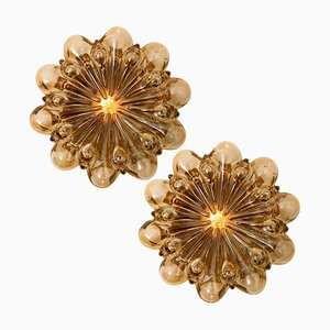 Amber Glass Wall Lights Sconces by Helena Tynell for Glashütte Limburg, Set of 2