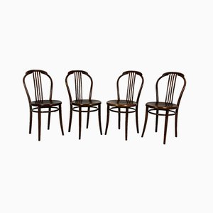 Bentwood Chairs from TON, 1960s, Set of 4