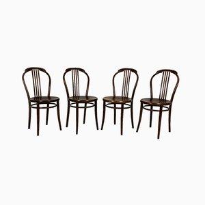 Bentwood Stühle von TON, 1960er Jahre, 4er-Set