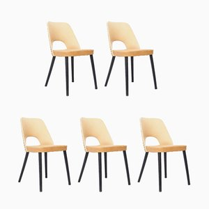 N515 Dining Chairs by Oswald Haerdtl for Thonet, 1950s, Set of 5