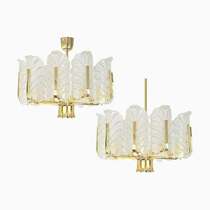 Murano Glass Chandelier by Carl Fagerlund, 1960s