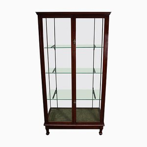 Victorian Mahogany Museum Shop Display Cabinet or Vitrine, Late 19th Century