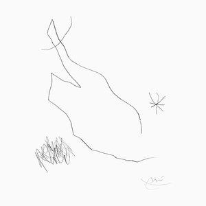 Joan Miró - Diario de un escritor - Vol. Lámina 2 5 - Grabado original - 1975