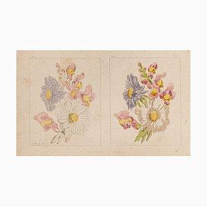 E. Laport - las flores - Litografía original sobre papel - 1860