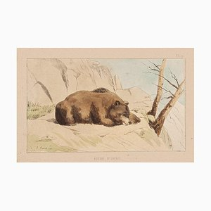 E. Laport - the Bear - Original Lithograph on Paper - 1860