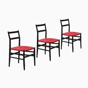 Italienische Stühle von Gio Ponti für Cassina, 1951, 3er-Set