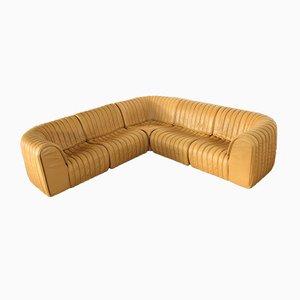 DS 22 Modular Sofa from de Sede, 1980s, Set of 5