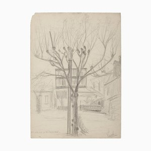 Unknown, Tree and House, Pencil on Paper, 19th Century