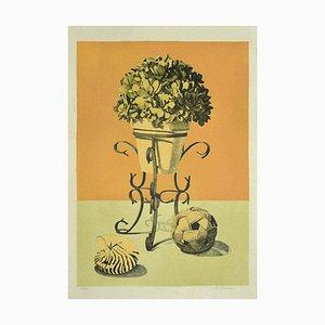 Lithographie Raffaello Piraino, Still Life, 1970s