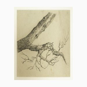 Unknown, Tree, Pencil Drawing, Frühes 20. Jahrhundert